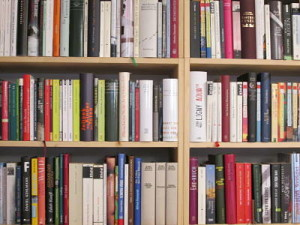 Buchhandlung Wiener Bücherschmaus Bücherregal